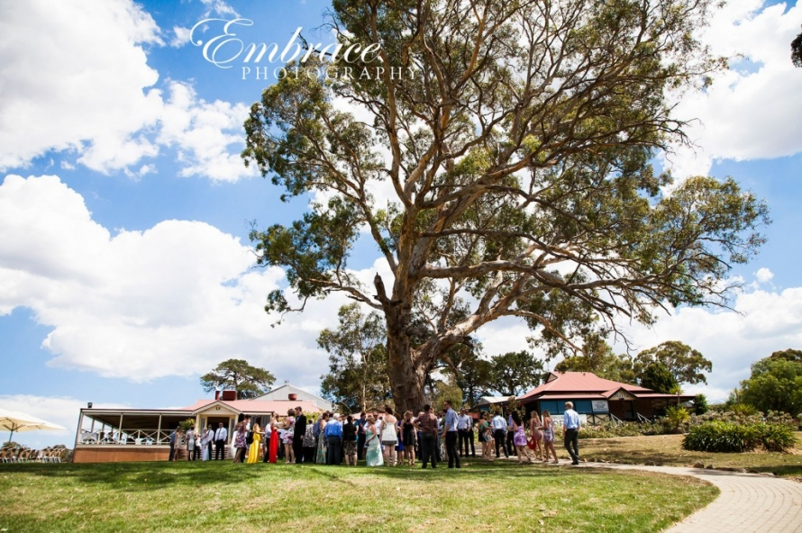 Longview-Winery-McLaren-Vale-Wedding-Photographer---M&K---0005
